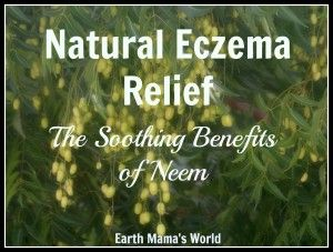 Natural Eczema Relief:  The Soothing Benefits of Neem
