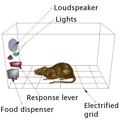 Operant conditioning chamber - Wikipedia, the free encyclopedia