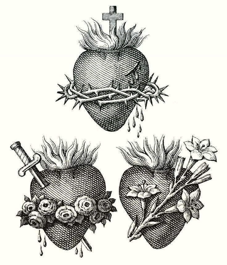 136 best Anatomie Herz images on Pinterest   Anatomical heart, Heart ...