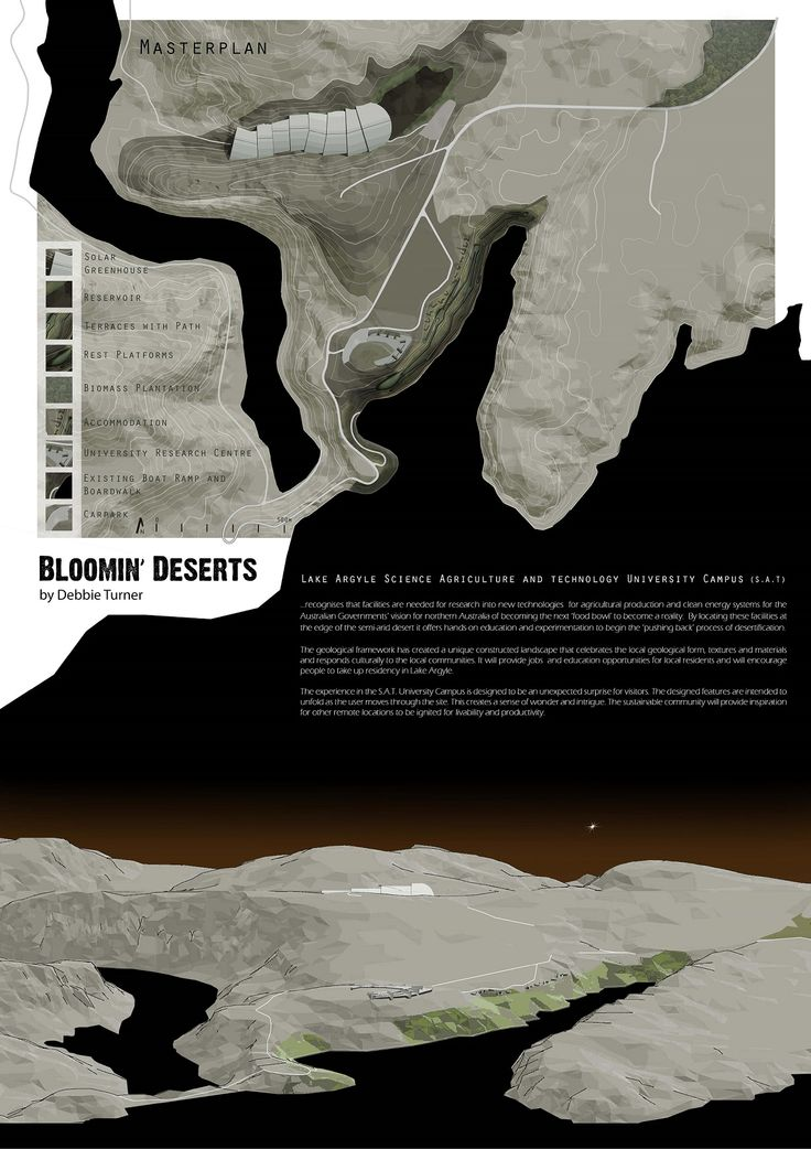 """Landscape Architecture Project """"Bloomin' Desert"""" by Debbie Turner 2015 Page 2 of 5"""