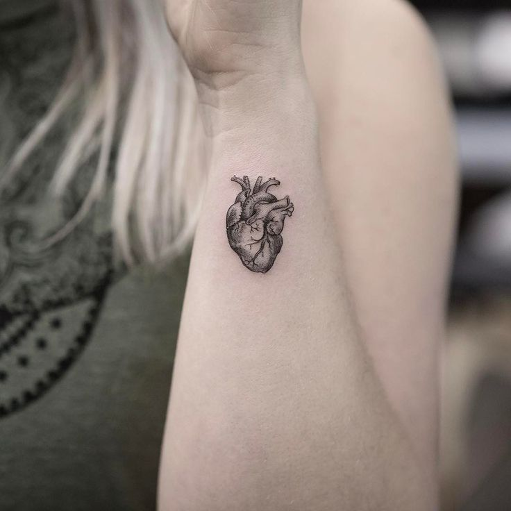 Tiny Anatomical Heart Tattoo by maxim.nyc