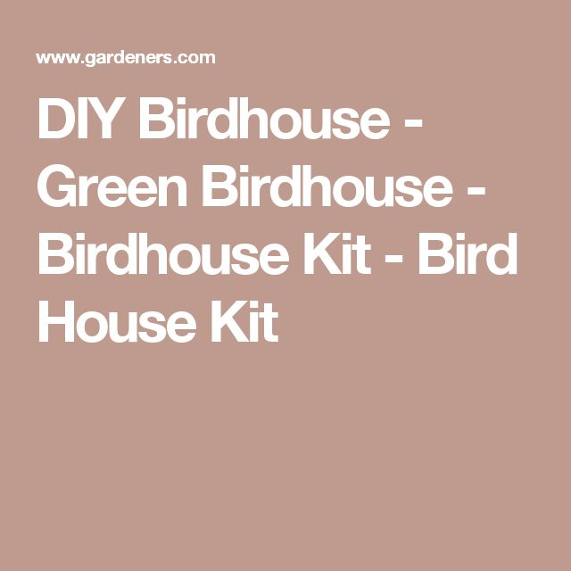 DIY Birdhouse - Green Birdhouse - Birdhouse Kit - Bird House Kit