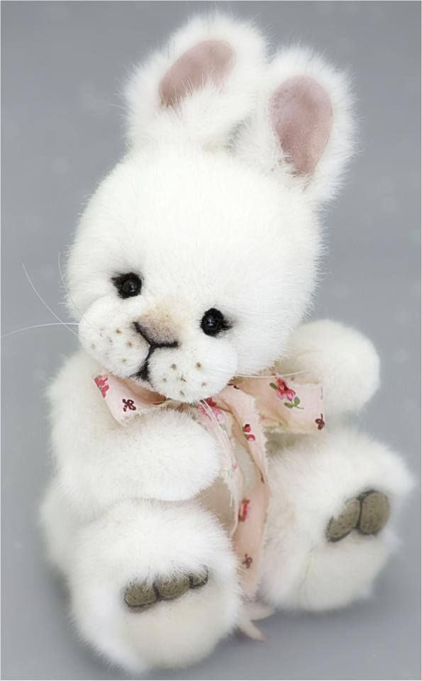 Amazon.com: bunny teddy bear