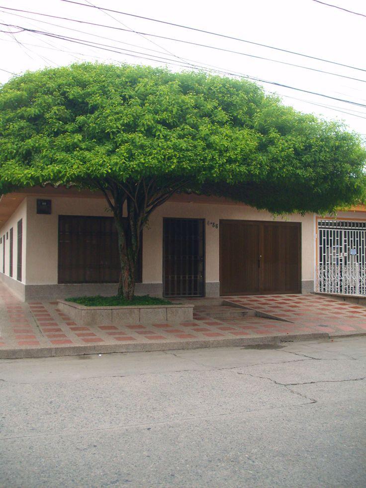 Barrio El Carmelo. Buga