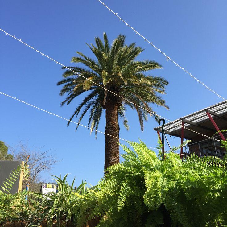 Winterlug, Bloemfontein