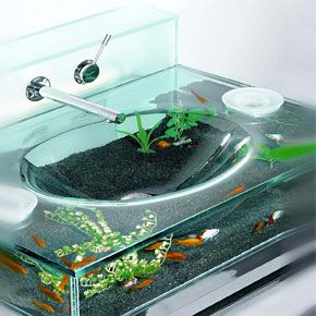 This is a working sink that is also an aquarium. YES.