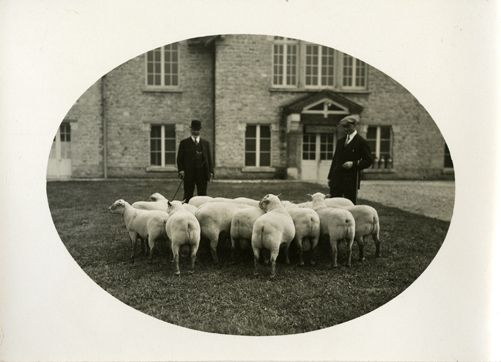 Grignon, hommes et moutons devant la laiterie, photographie ancienne, 1920-1930 / ©Musée du Vivant - AgroParisTech