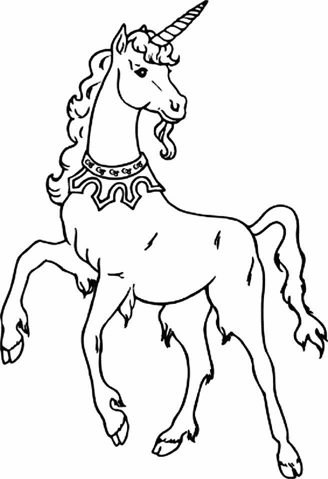 Mejores 131 imágenes de Diseños - Unicornios y Pegasos en Pinterest ...