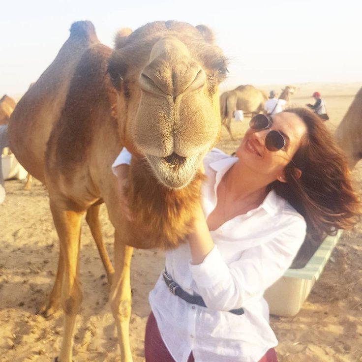 Oh boy, just give me a kiss �� . . . #camel #kiss #safari #abudhabi #dubai #uae #love #fun #deve #myabudhabi #mylifestyle #ootd #friday #funday #selfie #potd #photooftheday #izmir #turkiye #fashion #stylish #mystyle #outfit #boy #cuma #haftasonu #weekend #tgif #like4like http://www.butimag.com/fashion/post/1482795069026164344_1292616317/?code=BST8kJUAV54