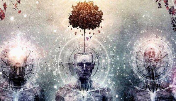 De pijnappelklier heeft altijd al - sinds mensenheugenis misschien zelfs - tot onze verbeelding gesproken, en onze speciale aandacht getrokken