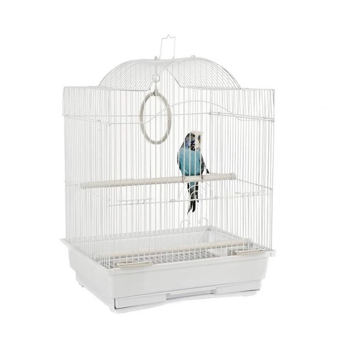 small parrot cages for sale