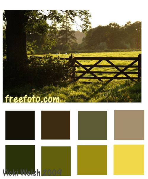 Colour palette for the country home / farmhouse.