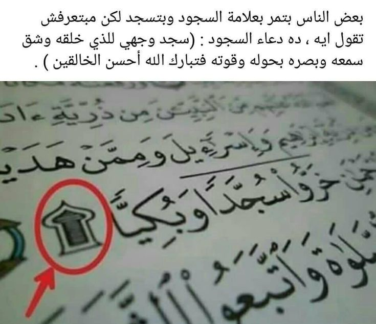 ᴛʜᴇ ᴏɴᴡᴇʀ ᴏғ ʜᴀᴘᴘɪɴᴇssシ Manshorak Posted On Instagram أنشرها عشان الكل يعرف محجبات مريلة كحلي بلوزات Instagram Posts Hijab Fashion Instagram