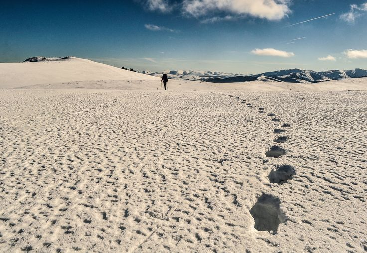 Walking in the great white by Florin Unguroiu on 500px