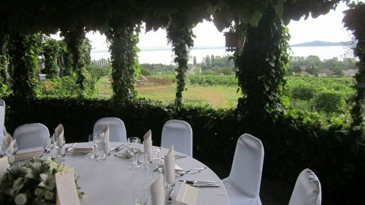 at the terrace of the Szeremley #winery at the #lake #Balaton #Hungary #Europe #gastronomy #culinar #food #wine #quality