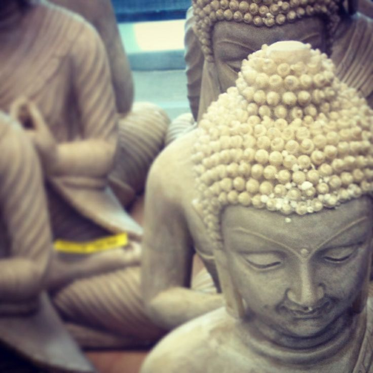 Buda en oferta