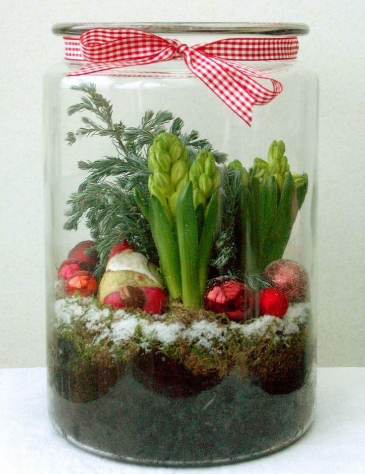 arrangement de bulbes de jacinthe, boules de sapin de Noël rouges et mousse dans un grand bocal en verre