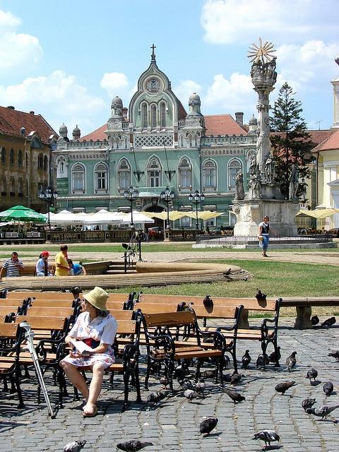 Plaza Timisoara