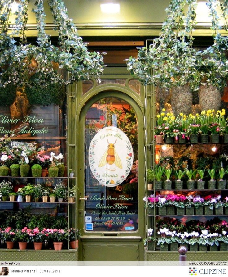 167 best Flower Shoppe ༺✿༻ images on Pinterest