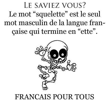 "Did you know that the word ""squelette"" is the only masculine word in French to end in ""ette"". French for all."