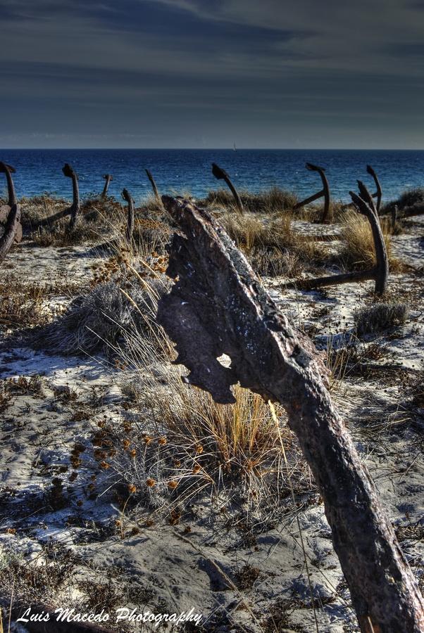 Barril beach, Tavira, Algarve