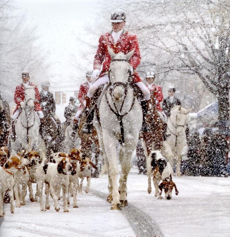 347 Best On Horseback Images On Pinterest