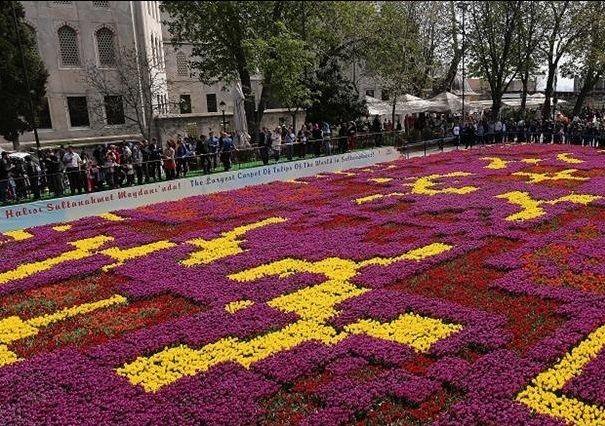 """На головній площі Стамбула Султанахмет урочисто відкрили для відвідувачів гігантський """"тюльпановий килим"""" з 545,000 тюльпанів. Завдяки рекордному масштабу - 1,226 м² - ця квіткова інсталяція стала найбільшою в світі."""