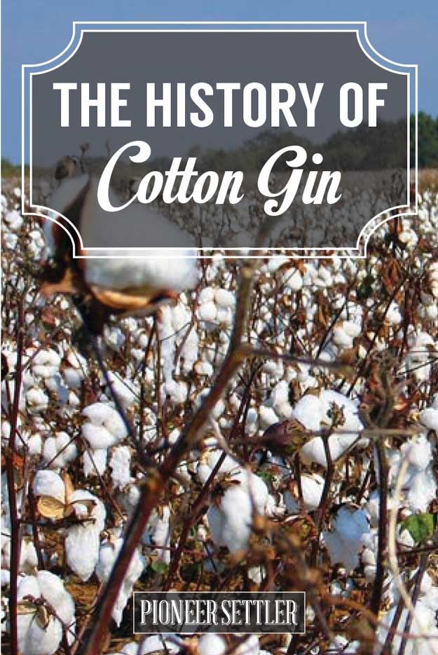 Check out History of the Cotton Gin | History Lessons from the Homestead at http://pioneersettler.com/history-cotton-gin/