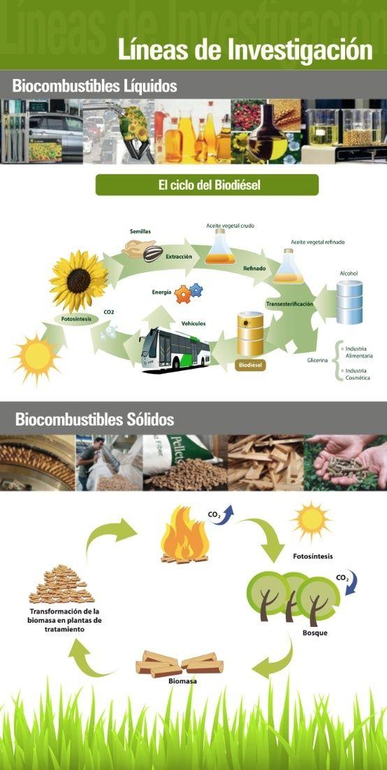 Proyectos de Agroenergía - Infografía completa en el sitio de Barrick Sudamérica http://barricksudamerica.com