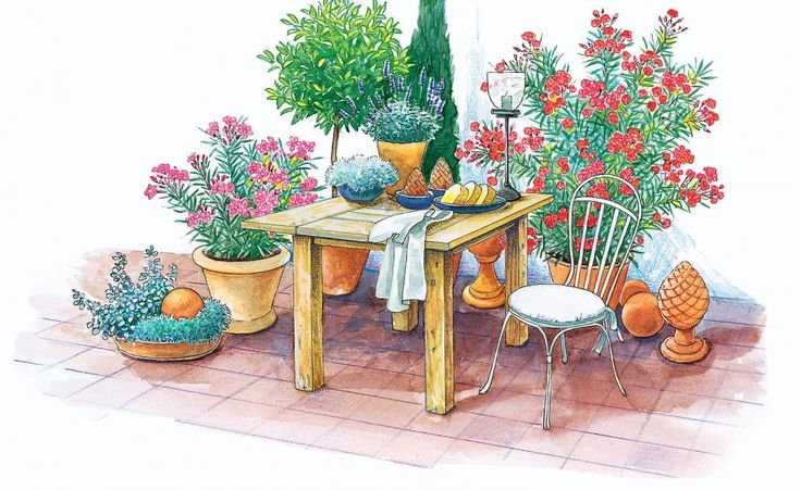 Die aromatischen Blätter des Lorbeerbäumchens können Sie frisch vom Strauch ernten. Würzige Aromen verströmen Thymian, Oregano und…