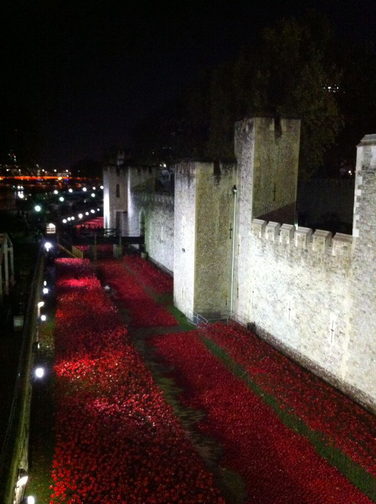 The Poppy installation at the Tower of London - just amazing