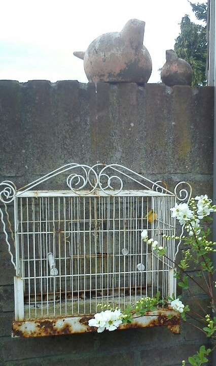 17 Best images about Bird Cages on Pinterest | Fire pits ...