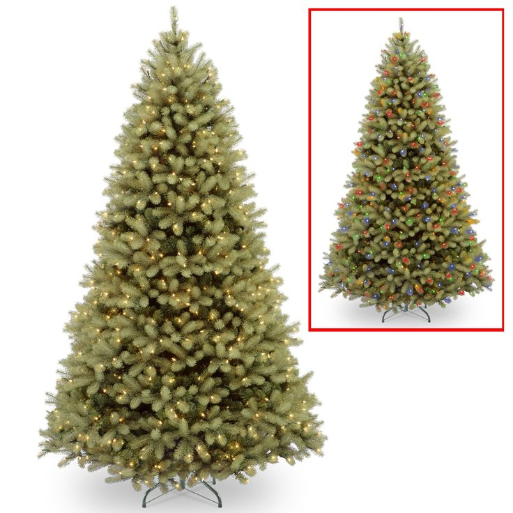 """National Tree PEDD1-312LD-10X 10' """"Feel Real"""" Down Swept Douglas Fir Hinged Tree with 1000 Low Voltage Dual LED Lights"""