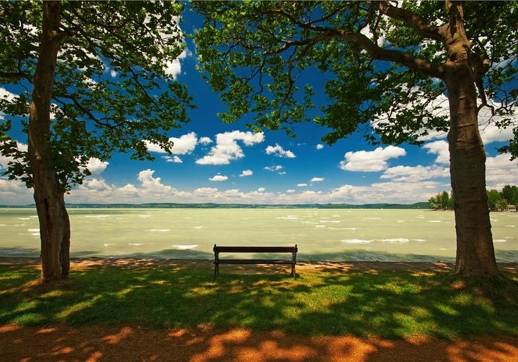 Bench with nice view by Botond Horváth