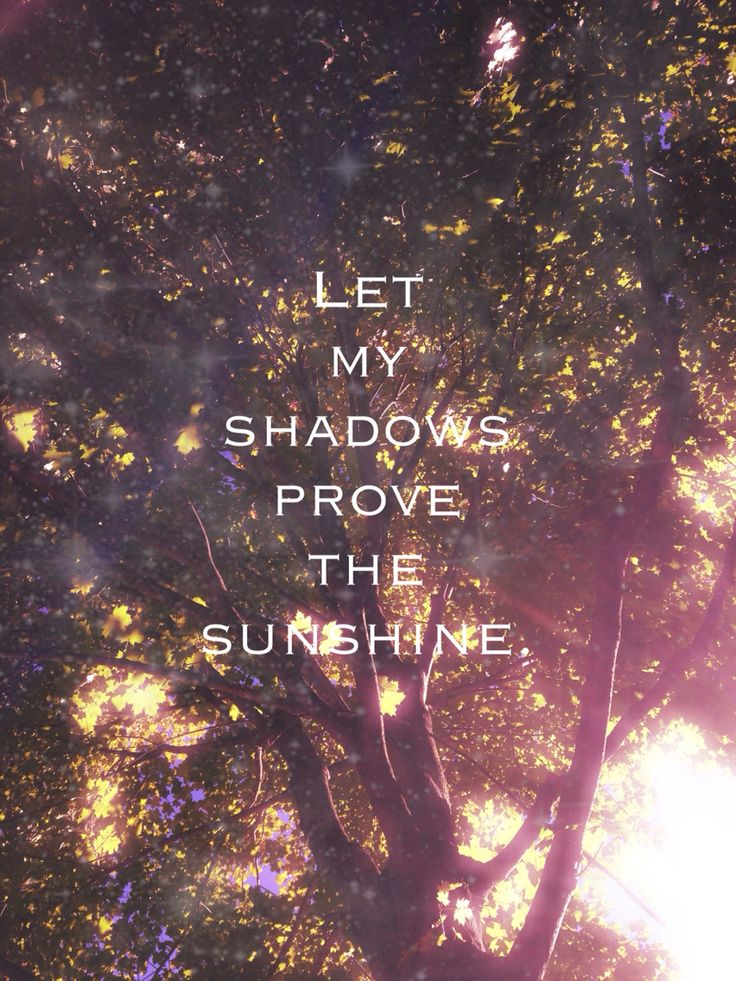 """The Shadow Proves the Sunshine"" -Switchfoot"