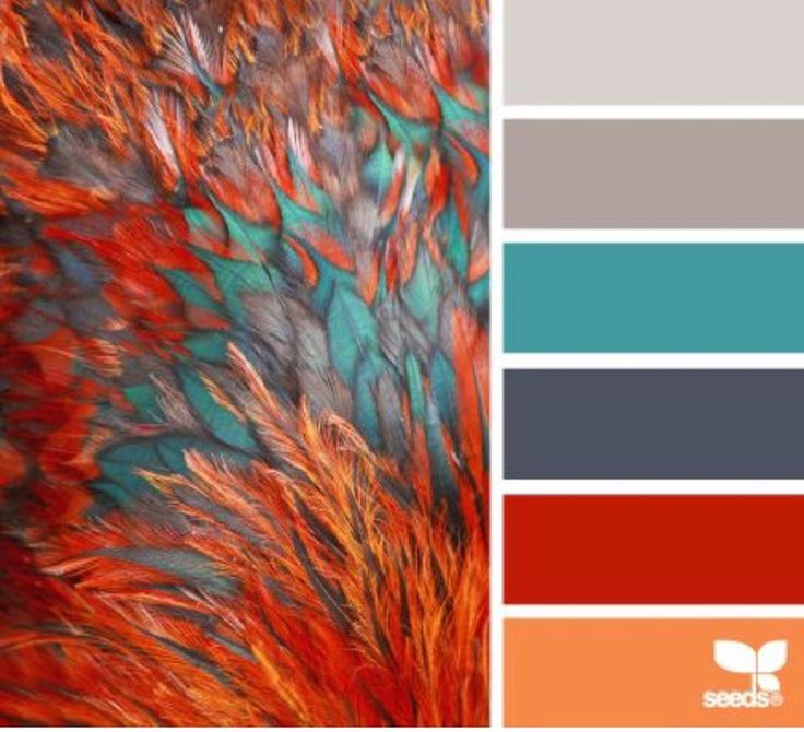 The Teal Is Striking And Refreshing Against The Orange And Reds Consider Using Teal As Kitchen Colour