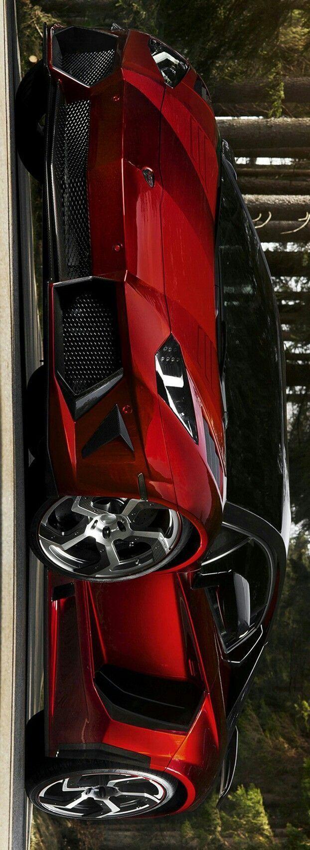 Lamborghini Aventador Roadster #1