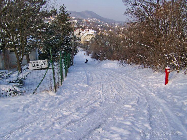 Budapest 201202 - Álom utca