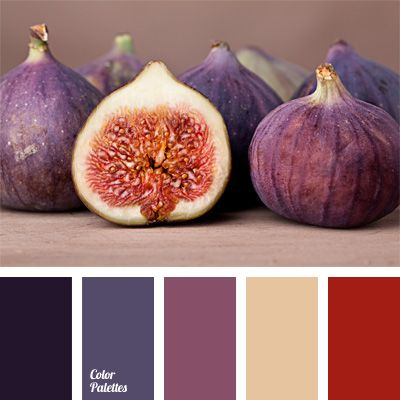 blue and purple, color matching, color of eggplant, color of of ripe flesh color figs, color palettes for decoration, cool shades, decorating color schemes, eggplant color, figs flesh color, lilac, palettes for designer, Pink Color Palettes, red flesh, White Color Palettes.