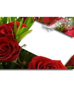 Una forma nueva de regalar flores con este marco para una fotografía, que aparecerá rodeada de rosas y una firma brillante. Demuéstrale tu amor con este detalle elegante que podrás descargar para imprimir o enviar por correo electrónico. http://www.fotoefectos.com