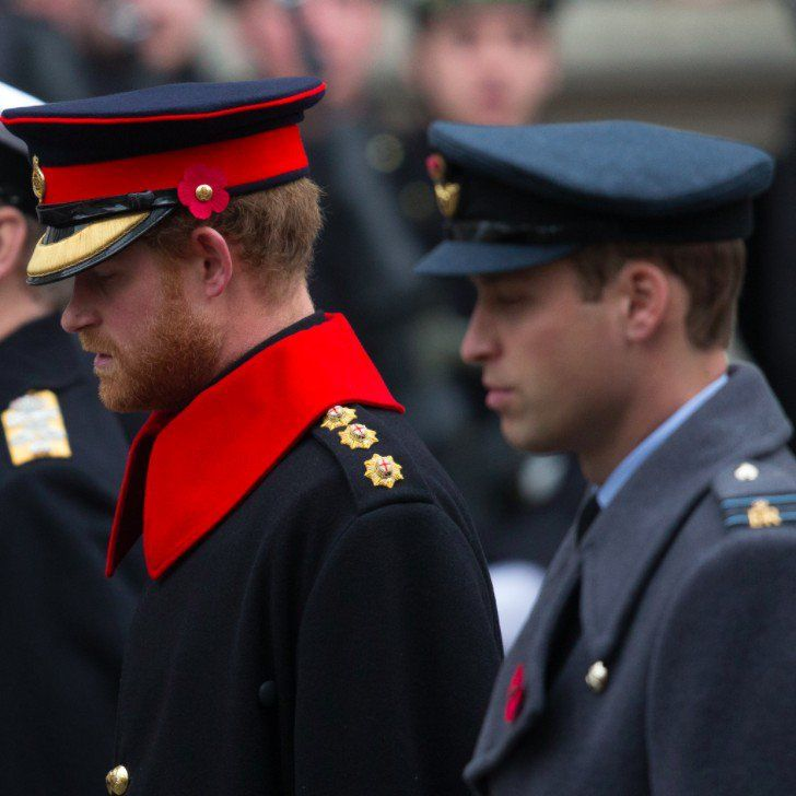 Prince Harry and Prince William Pay Their Respects on Remembrance Day