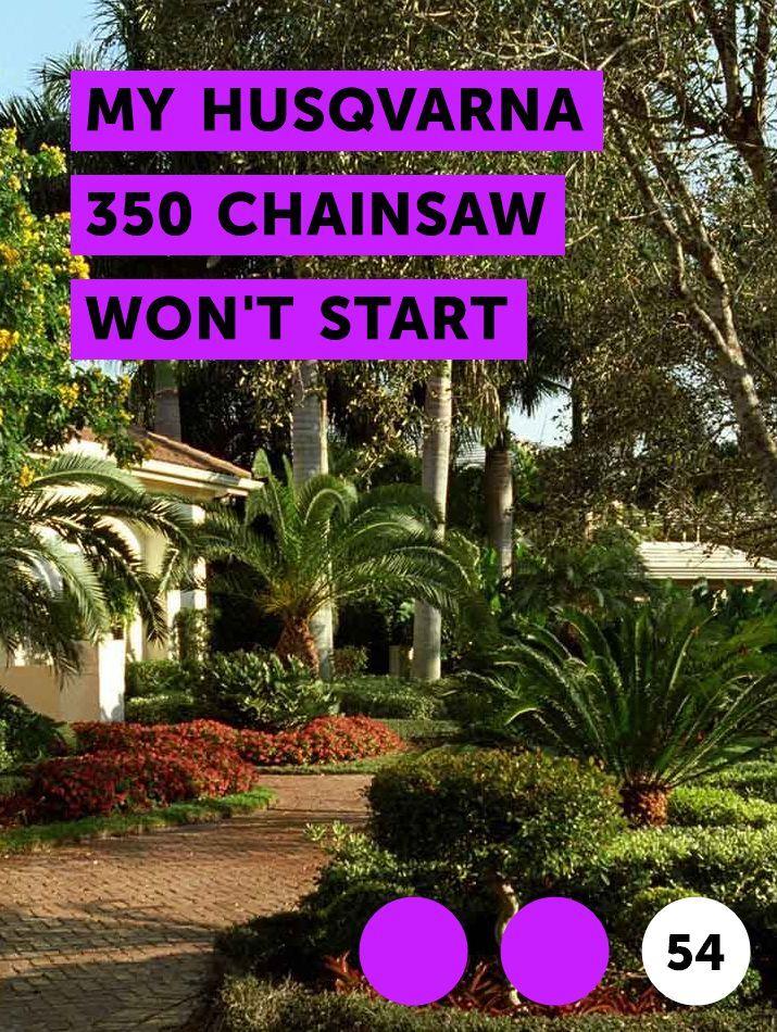 My Husqvarna 350 Chainsaw Won't Start | Lawn Tools | Plants