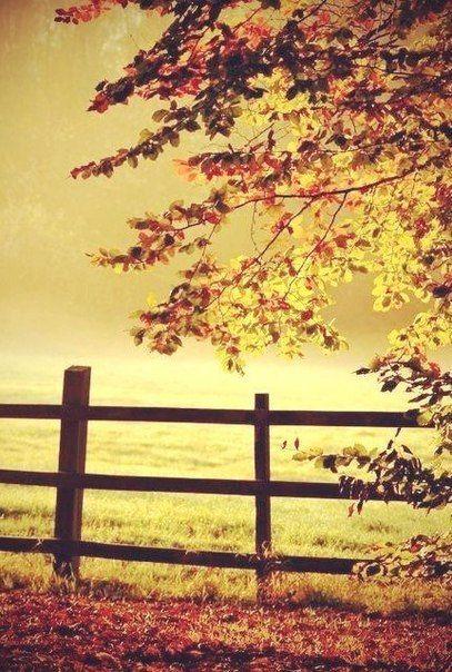 Я хочу научиться смотреть на время, не сравнивая; двигаться вперед, не оглядываясь назад; ценить то, что есть, в его самобытности; просто жить настоящим, самой поверив в то, что иногда чудеса случаются...