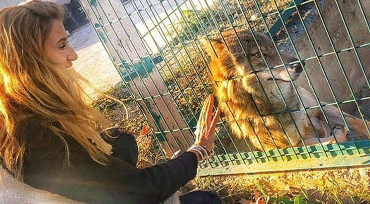 Tuğba Özay Bursa'da uğradığı Vahşi hayvanları rehabilitasyon merkezindeki deneyimini takipçileri ile paylaştı. Detaylar ajanimo.com'da.. #ajanimo #ajanbrian #hayvan #animal #wolf