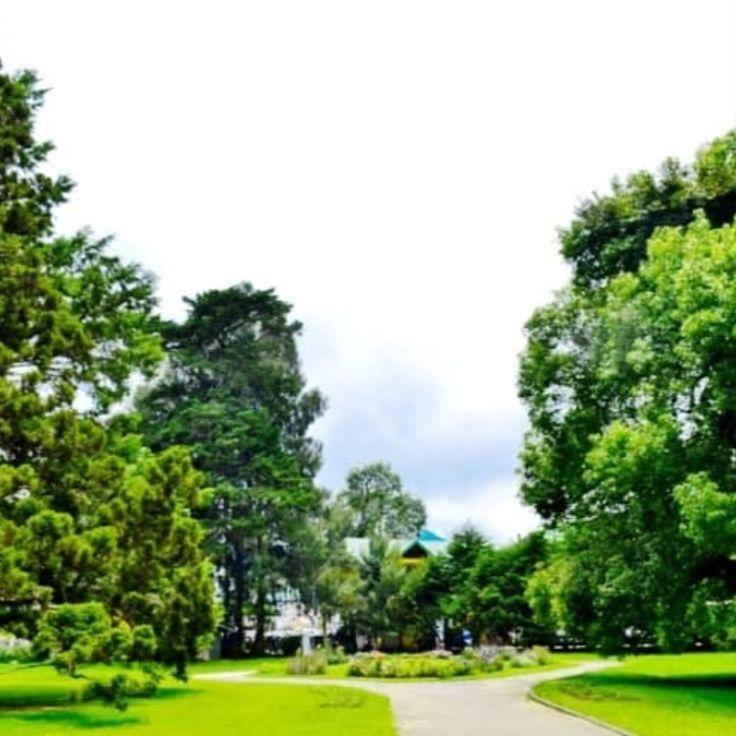 حديقة فيكتوريا بارك نوراليا House Styles Mansions House