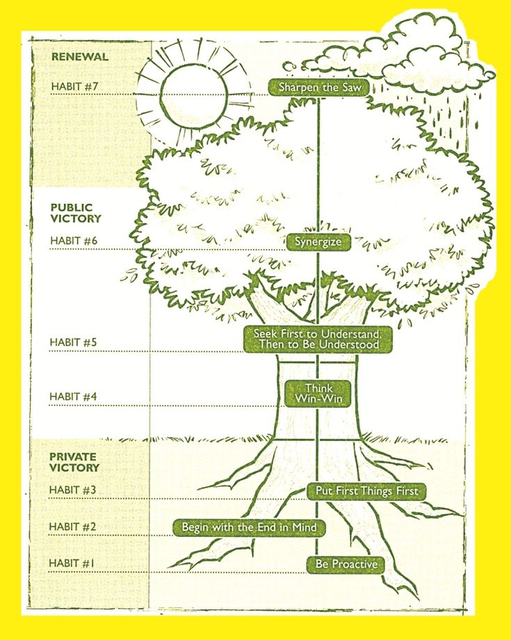 7 Habits Tree Diagram