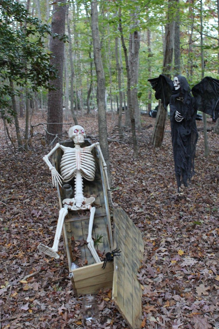 17 best images about halloween haunt on pinterest for Haunted woods ideas