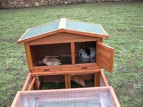 Parque de conejos enanos y jaula de dos pisos de madera