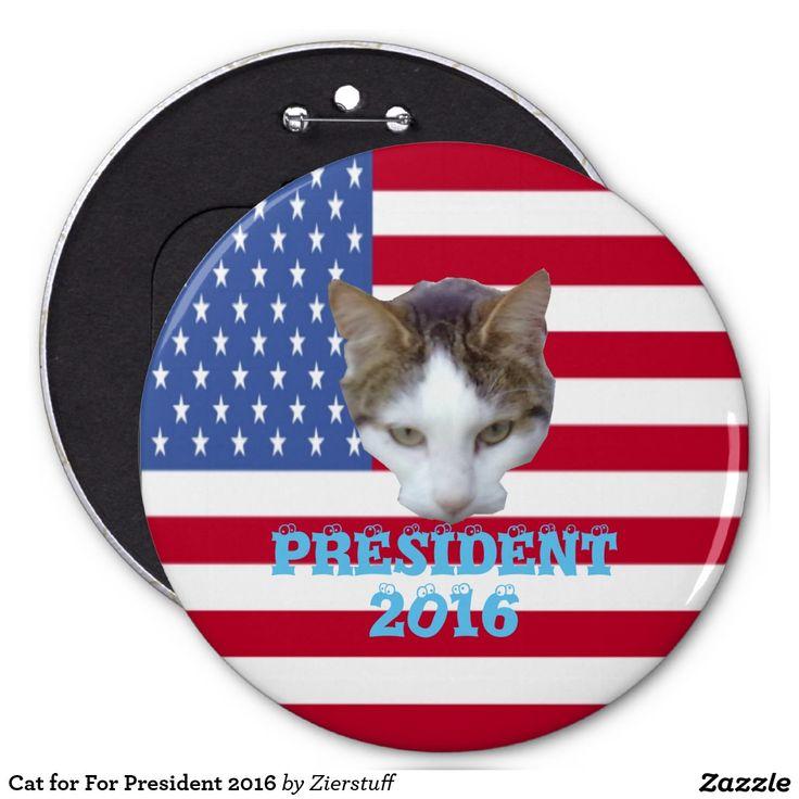 Cat for For President 2016