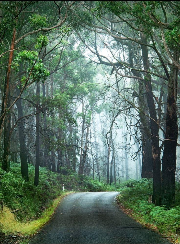 Grampians National Park by Ben Goode http://www.bloggerme.com.au/states/wonthaggi Australia